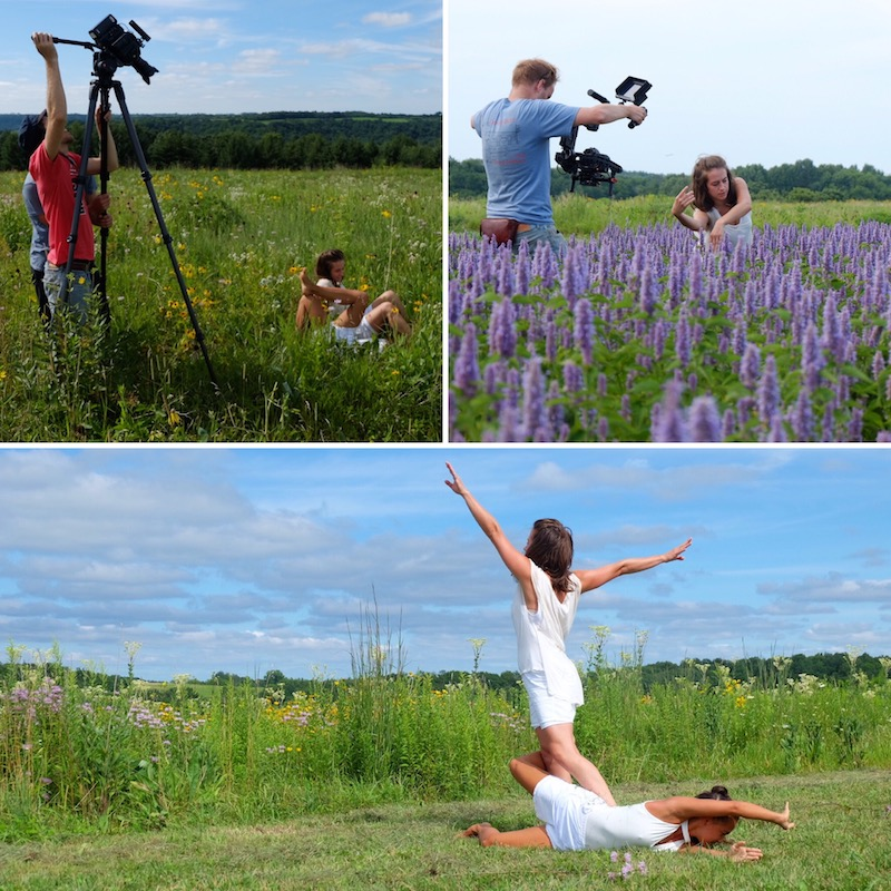 videographers & dancers in fields of flowers